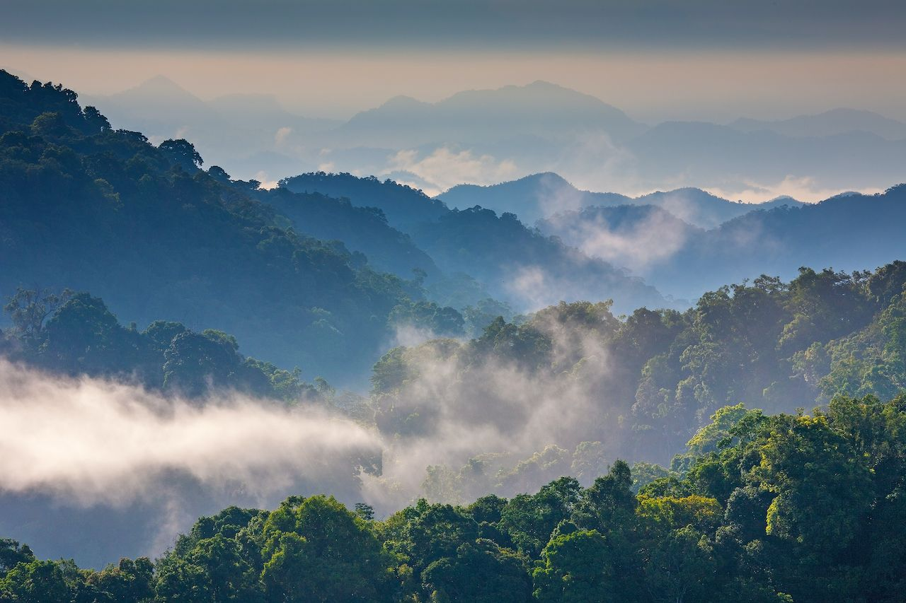 Morning Mist at Kaeng Krachan national park,Thailand