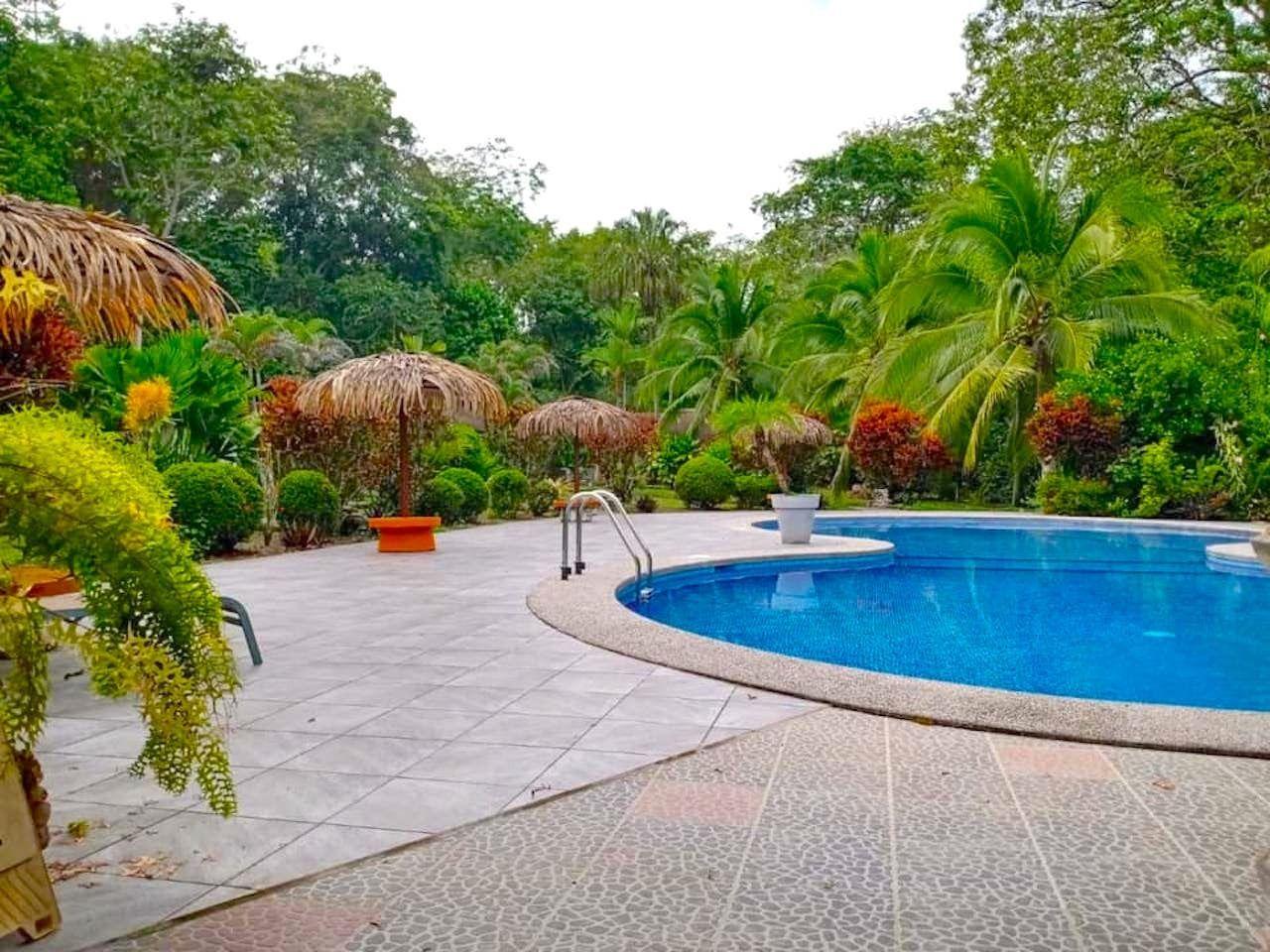 cahuita costa rica, where to stay suizo loco lodge