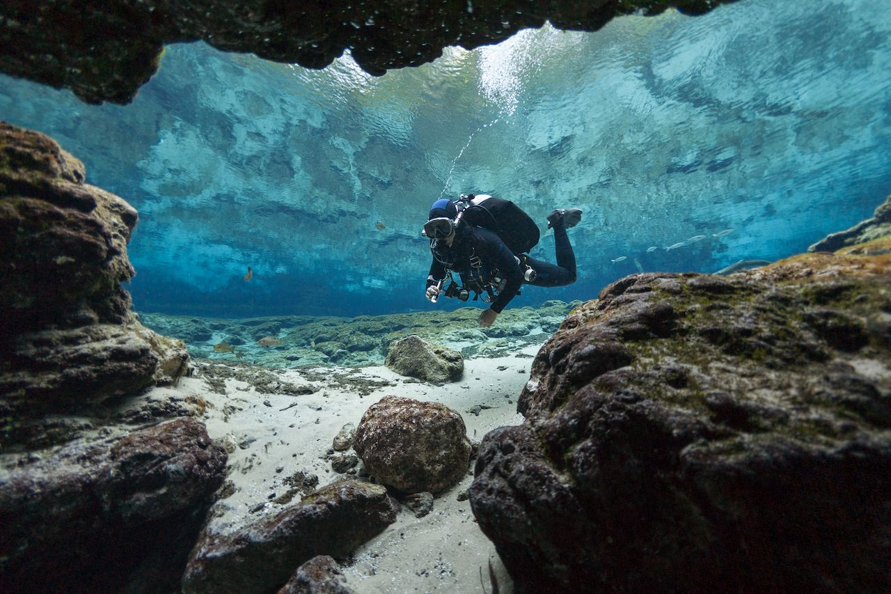 Scuba dive to submerged forests, shipwrecks, and caverns at these US lakes