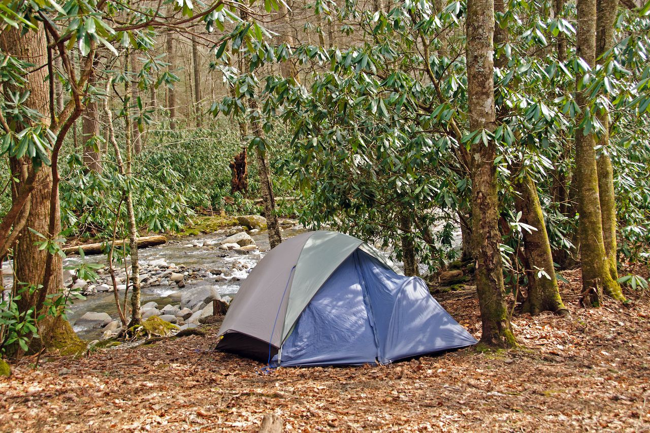 Campsite,On,Cabin,Creek,In,The,Great,Smoky,Mountains