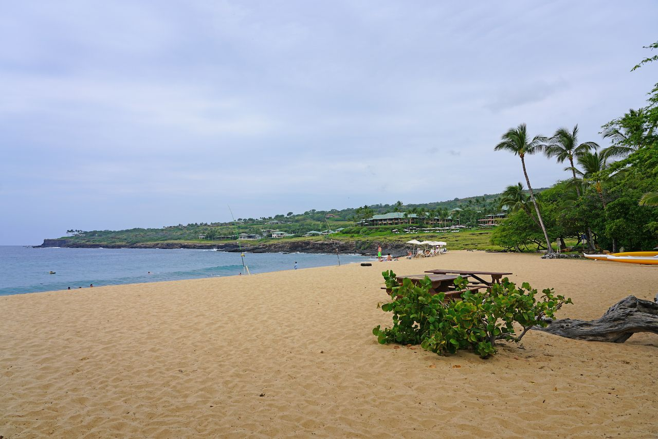 LANAI by jeep, HAWAII -31 MAR 2018- View of the Hulopoe Beach, next to the Four Seasons Resort Lanai, on the Pacific Ocean. It is common to see spinner dolphins in the water.