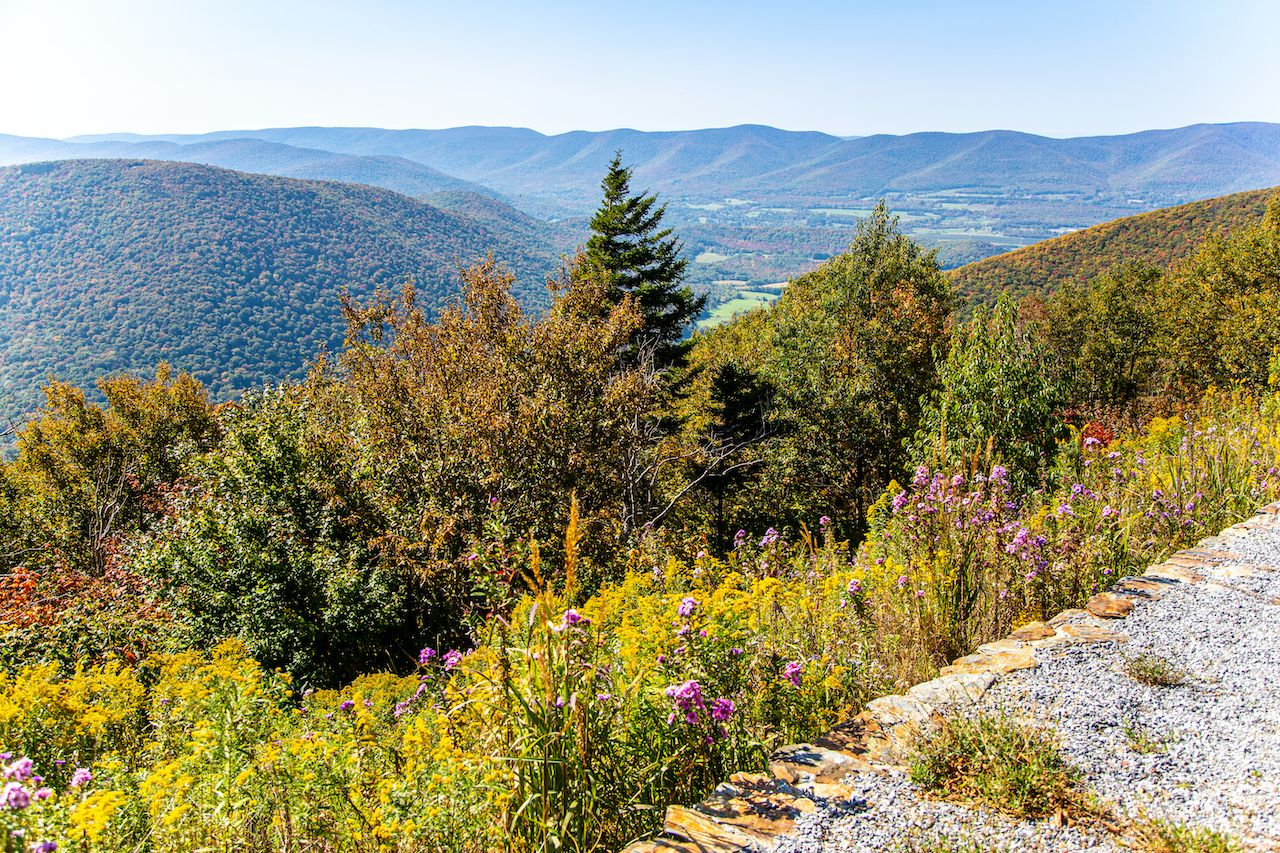View,From,The,Side,Of,Mount,Greylock,In,The,Fall