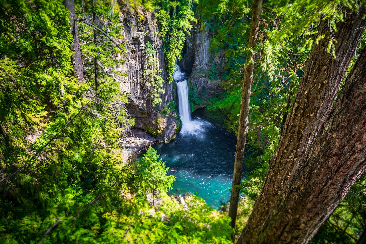 Toketee,Falls,On,Umpqua,Scenic,Byway,,Southern,Oregon