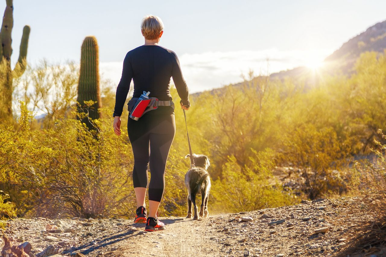 Unidentifiable,Woman,Walking,A,Dog,On,A,Hiking,Path,In
