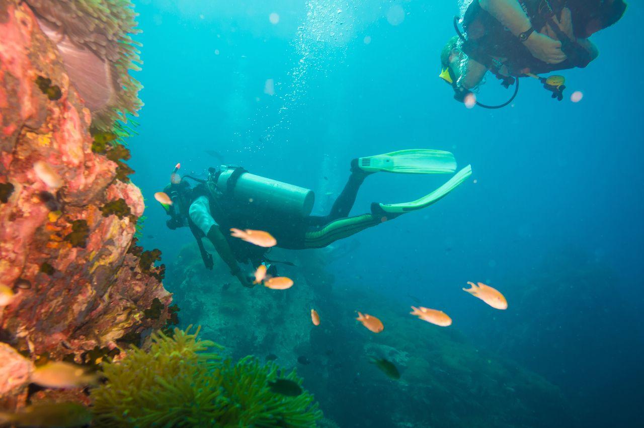 Scuba diving on coral reef in sea, Koh Tao, Thailand, sandbox program