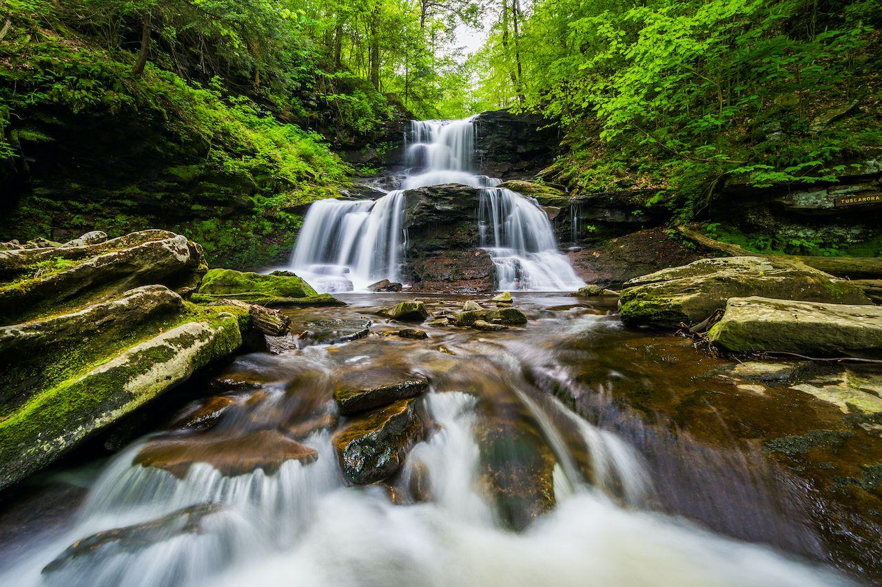 Tuscarora,Falls,,At,Ricketts,Glen,State,Park,,Pennsylvania.