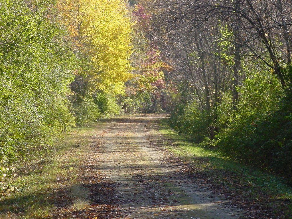 white-river-state-trail-rails-to-trails