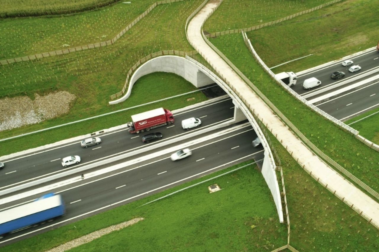 Aerial view of a grassy wildlife crossing bridge over a highway in the UK