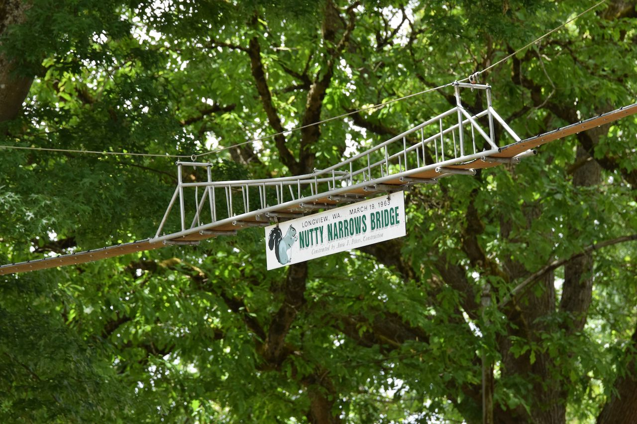 Nutty Narrows Bridge wildlife crossing for squirrels across treetops in Washington state