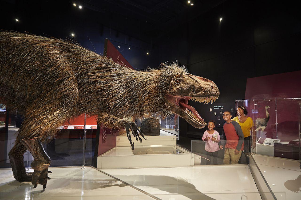 Dinosaur gallery at COSI in Columbus Ohio