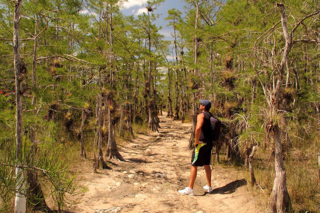 Hard hikes flat states Florida