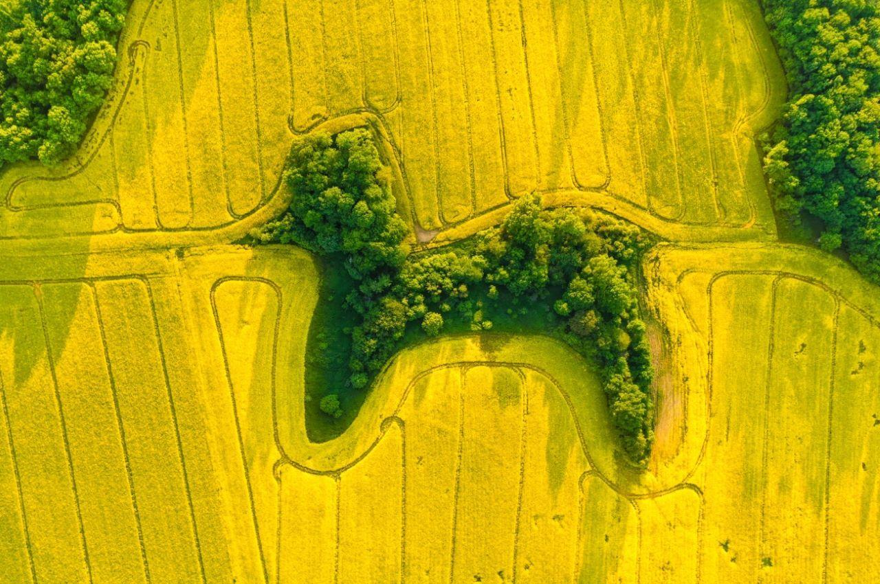 Jan-Ulicki-Drone-Photo-Awards-2021