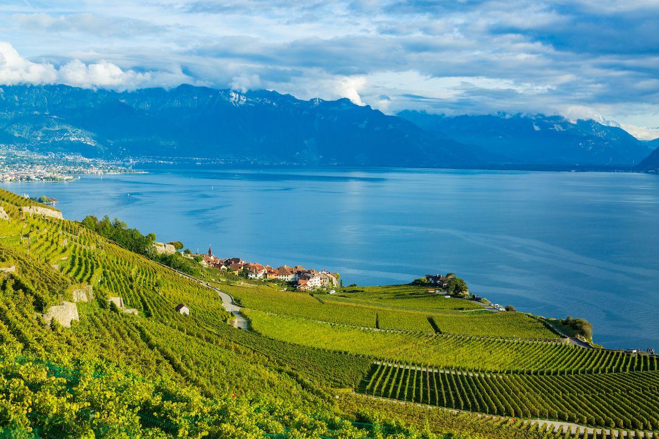 The Vineyard Terraces of Lavaux in Switzerland
