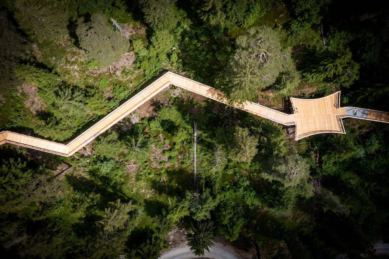 World's longest treetop walkway in Switzerland from above