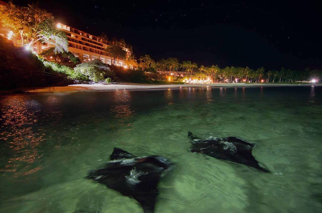 best stargazing places maunakea beach hotel