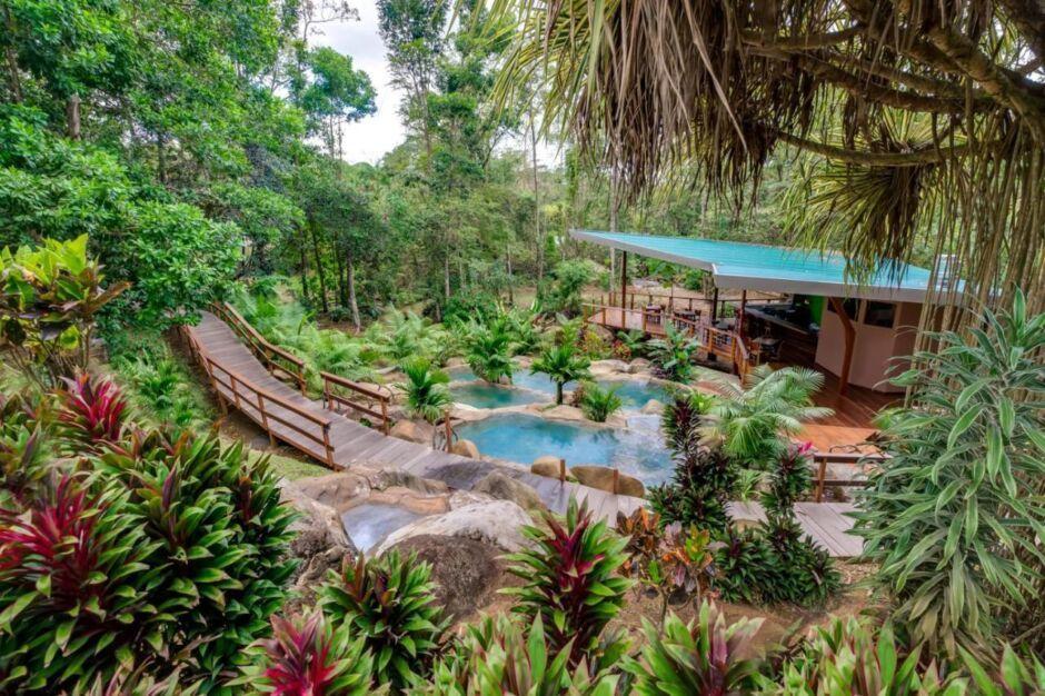 chachagua rainforest hotel costa rica hotels