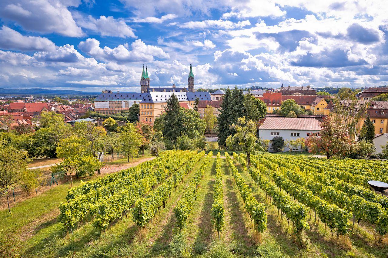 Bamberg germany vineyards in franconia wine region