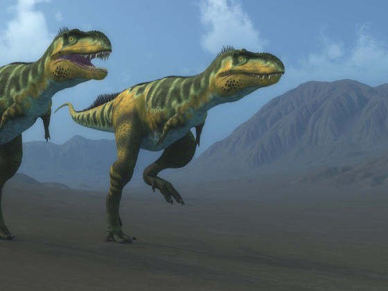 Dinosaurios En El Mexico Prehispanico Matador Espanol Dinosaurio lindo que juega con la ilustración de la mariposa. dinosaurios en el mexico prehispanico